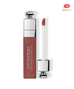son dior addict lip tattoo 491